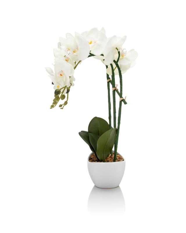 led-orchidee-48-cm-hoch