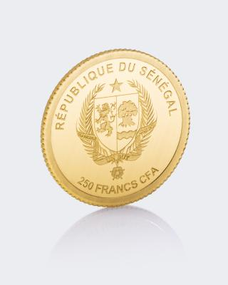 Unified Nations Goldmünze Sternschnuppe